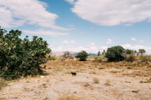Bureau Zweisam | Fotografie | Dokumentation